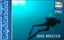 Aquabud Scuba - Dive Master Course